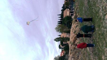 kites-3