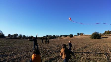 kites-7