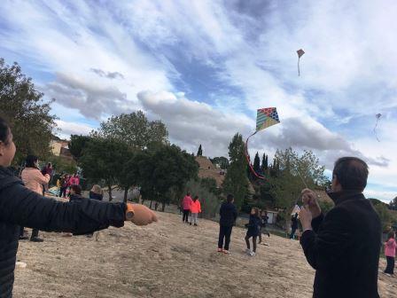 kites-8